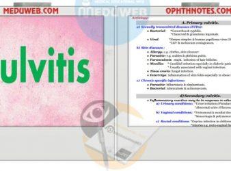 Vulvitis